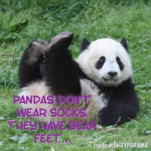 Jackets & Coats - Because Pandas...